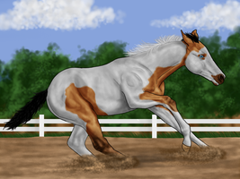 I think he's a reiner... by Wild-Rose-Ranch