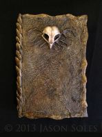 Owl Skull Book by MrSoles