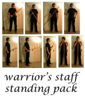 warrior's staff standing by syccas-stock