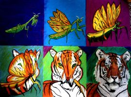 metamorphosis of a praying mantis into a Tiger by smokinsteve57