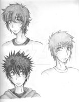 The Heir Trilogy by SpiralNinja05