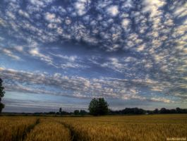 Clouds, again...IV by digitalminded