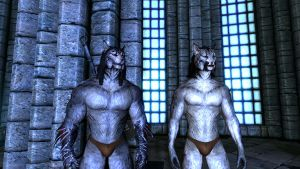 Khajiit Team - Brains and Brawns Better Appeal by Wolfgerlion