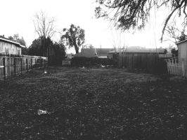 Empty Lot by theworst24