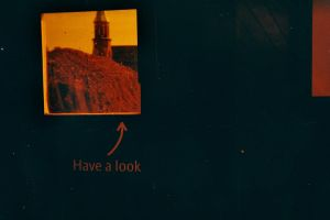 Lomography Redscale #2 by ncaph