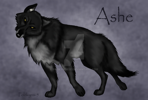 Ashe the wolf by pookyhorse