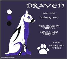 Draven (FOR SALE) by arbutusbreedery