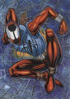 SCARLET SPIDER SKETCH CARD 2012A by AHochrein2010