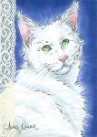ACEO Maine Coon Cat by AnaisKalinin
