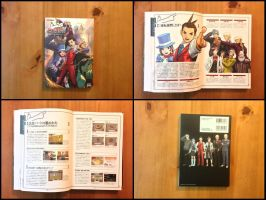 Gyakuten Saiban 4 Official Complete Guide by BenjaminHunter