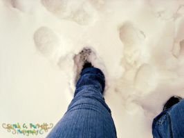 006-365 :: Ankle Deep by SarahCB1208