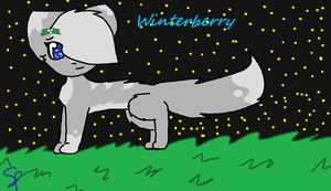 Winterberry by Snowflame132