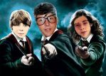 Harry Potter and the Philosophers 3 Emblems by RowdyMG
