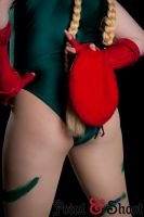 Cammy Teaser by NorseDanceParty
