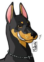 Doberman's head by J-e-J-e