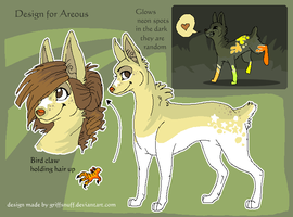 Contest entry for areous by griffsnuff