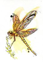 Gold Dragonfly by FinchFight
