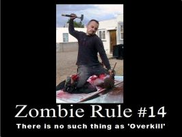 Zombie Rule 14 by psbox362