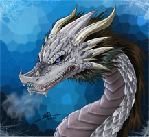 Silver Dragon by girldirtbiker
