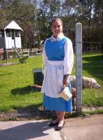 Village Belle Commission by CostumesbyCait