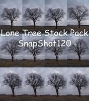 Lone Tree Stock Pack by SnapShot120