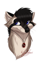 .:GA:. Rocky the Raccoon~ by ScottishRedWolf