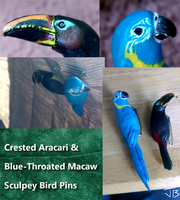 Sculpey Bird Pins by TheMeekWarrior