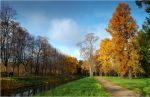 The colours of Fall... _157 by my-shots