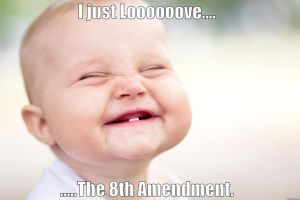 I LOVE THE 8TH AMENDMENT by ChristianTruthTeller