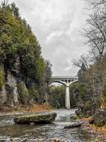 Grand River, Elora Gorge (WAB0331) by WayneBenedet