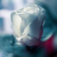 hear me now by illusionality