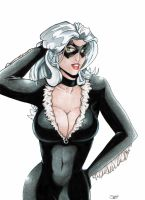Black Cat - Coloured Pencils by StingRoll