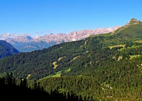 Green landscape by Sergiba