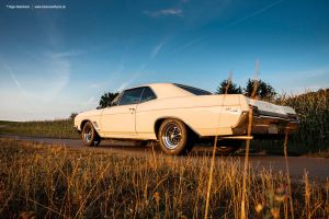 67buickgs by AmericanMuscle