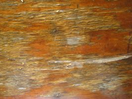 Wood Texture 07. by stock-basicality
