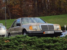 1986 Mercedes by canona2200