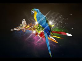 The Parrot by featheredpixels