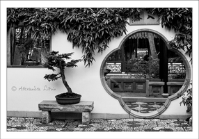 Chinese Gardens - 4 by mrsmonaghan