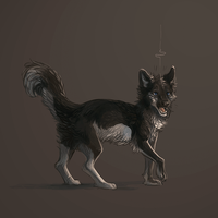 Doggie by Talkis