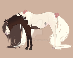 Mare Concept Design by Mlle-Kamichat