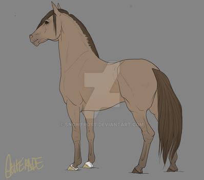 Adoptable Mustang 2 - Classic Champagne by Snowfrost