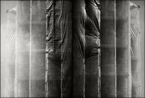 In concealment - Diptych by Poromaa