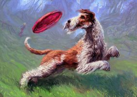 Dogfrisbee Freestyle by Merlkir