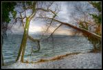HDR Vidy 13 by sandpiper6