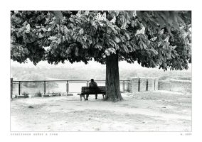 Loneliness under a tree by ESDY
