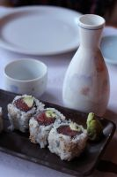 sake and sushi by thevictor2225