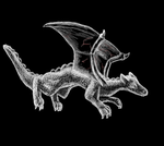 Dragon by Colliequest