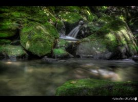 Ross Creek 23 by shadowfoxcreative