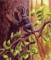 Epidexipteryx by EWilloughby
