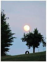 Moon Rises Over Hill-tireswing by CrystalMarineGallery